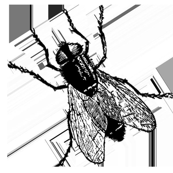 fly control saskatchewan